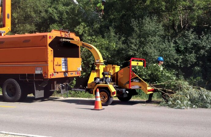 Commercial Tree Services-Mango FL Tree Trimming and Stump Grinding Services-We Offer Tree Trimming Services, Tree Removal, Tree Pruning, Tree Cutting, Residential and Commercial Tree Trimming Services, Storm Damage, Emergency Tree Removal, Land Clearing, Tree Companies, Tree Care Service, Stump Grinding, and we're the Best Tree Trimming Company Near You Guaranteed!