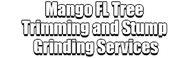 Mango FL Tree Trimming and Stump Grinding Services Logo-We Offer Tree Trimming Services, Tree Removal, Tree Pruning, Tree Cutting, Residential and Commercial Tree Trimming Services, Storm Damage, Emergency Tree Removal, Land Clearing, Tree Companies, Tree Care Service, Stump Grinding, and we're the Best Tree Trimming Company Near You Guaranteed!