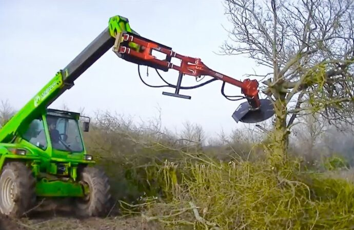 Tree Trimming Services-Mango FL Tree Trimming and Stump Grinding Services-We Offer Tree Trimming Services, Tree Removal, Tree Pruning, Tree Cutting, Residential and Commercial Tree Trimming Services, Storm Damage, Emergency Tree Removal, Land Clearing, Tree Companies, Tree Care Service, Stump Grinding, and we're the Best Tree Trimming Company Near You Guaranteed!